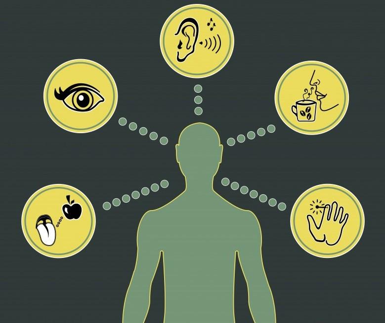 10. Игра с вашими чувствами воздействие, интернет, маркетолог