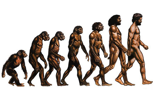 a look at the biological and cultural development of humans through evolution Check out the simpsons take on evolution, both biological and cultural cord to pass through human past: world prehistory&the development of.