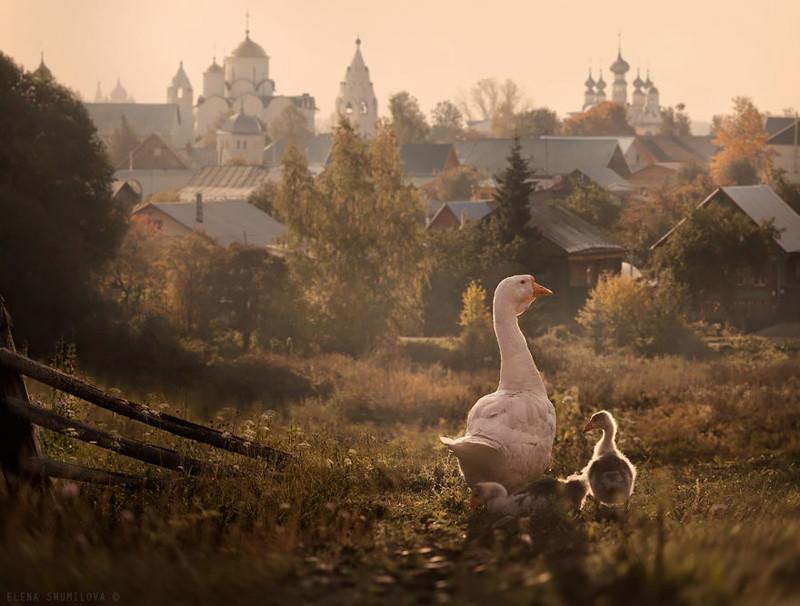 Сказочные деревушки, куда вы можете сбежать от серых будней древня, путешествие