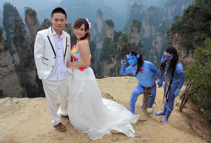 Аватар Свадебное оформление, жених и невеста, свадебная церемония, свадьба, тематическая