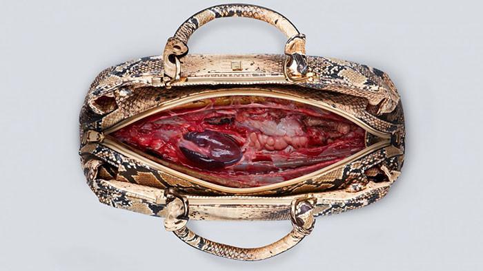 Все они содержали фальшивую кровь и плоть животных. В одной из сумочек даже оказалось бьющееся сердце. peta, жуть, кожа, шок