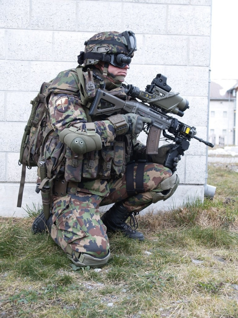 Швейцарская пехота. армия, будущее, солдаты