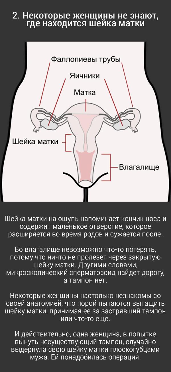 zhenskoe-vlagalishe-zakrito-paren-trahaetsya-v-obshage-s-dvumya-devchonkami-russkoe-smotret