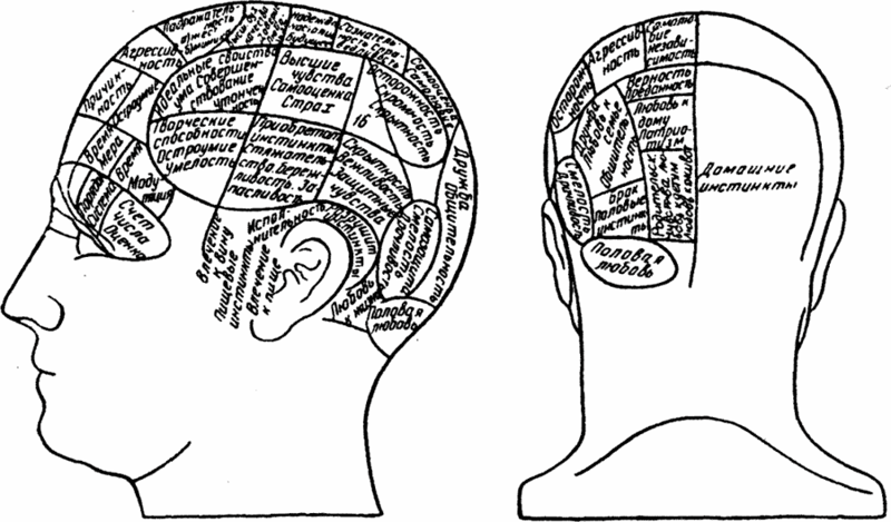 Френология люди, наука, теория