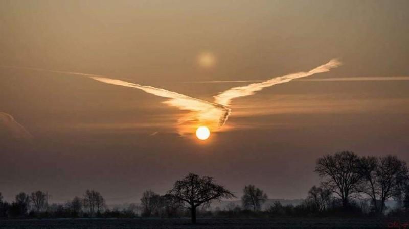 Солнце в лапах природа, фотографии
