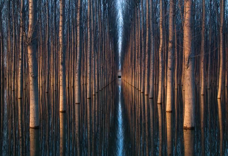 Отраженное совершенство природа, фотографии