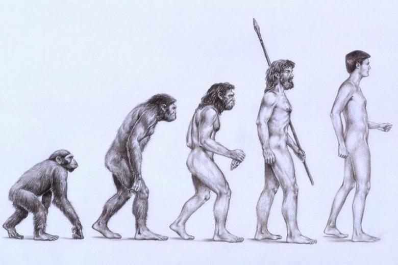 6. Вид Homo sapiens постоянно эволюционирует история, первобытные люди, факты