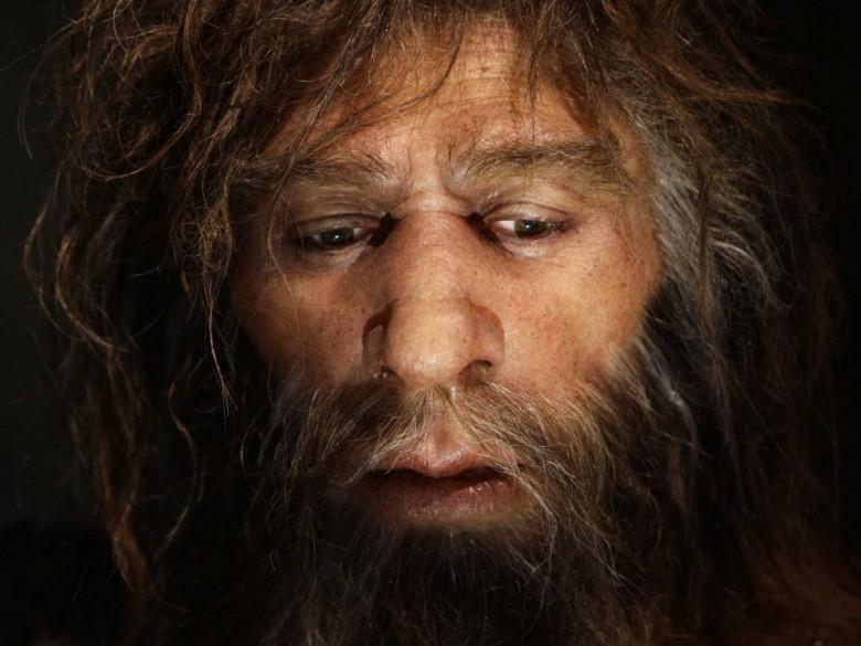 8. Возможно, в вас есть гены неандертальцев история, первобытные люди, факты