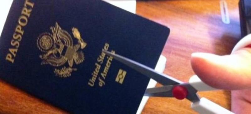 Что дает американское гражданство Элвин