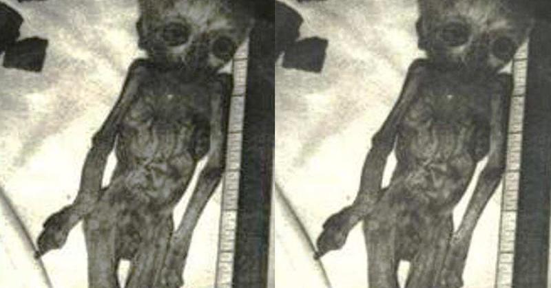 10 невероятных открытий, которые не в силах объяснить историки загадки, история человечества, находки, непознанное