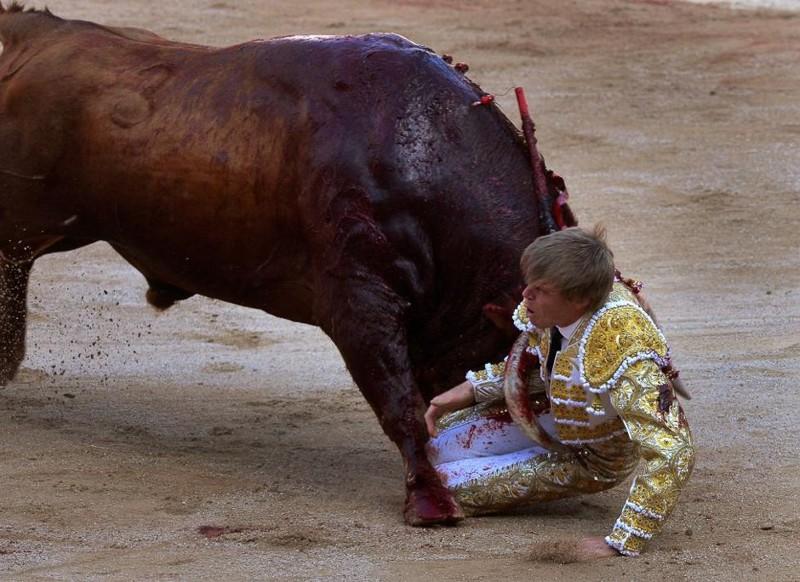 Тореадор Хавьер Химинес проиграл быку. Фестиваль Сан-Фермин, Памплоне, Испания, июль 2016. животные, люди