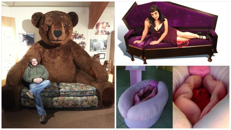 смешные фото картинки кресла винтажное изображение собаки