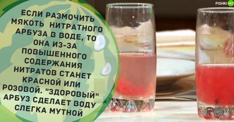 Водный тест арбуз, информация, нитраты, полезное