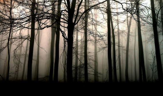 Джеймс Уорсон загадки, инопланетяне, исчезновения, тайны
