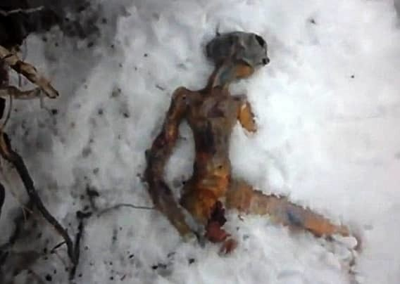 Сибирский инопланетянин мистика, находки, тайны, чудовища