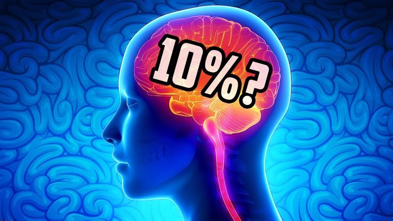 Мы используем только 10% своего мозга интересное, мифы, наука