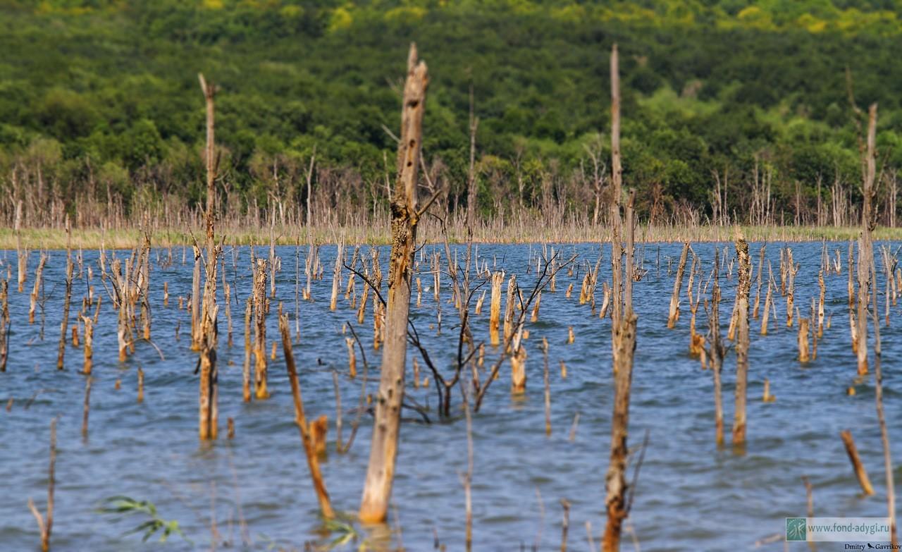 озеро тамбукан фото места повышенной комфортности