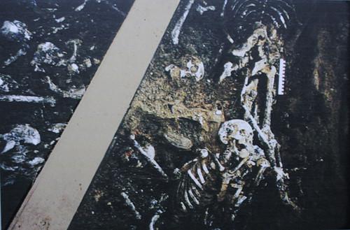 В раскопе площадью в 12 м2 специалисты обнаружили останки 149 человек Бутовский расстрельный полигон, история, москва