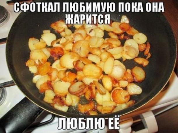 решили демотиваторы про картошку с мясом отец