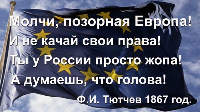Молчи позорная европа и у россии только жопа а думаешь что голова