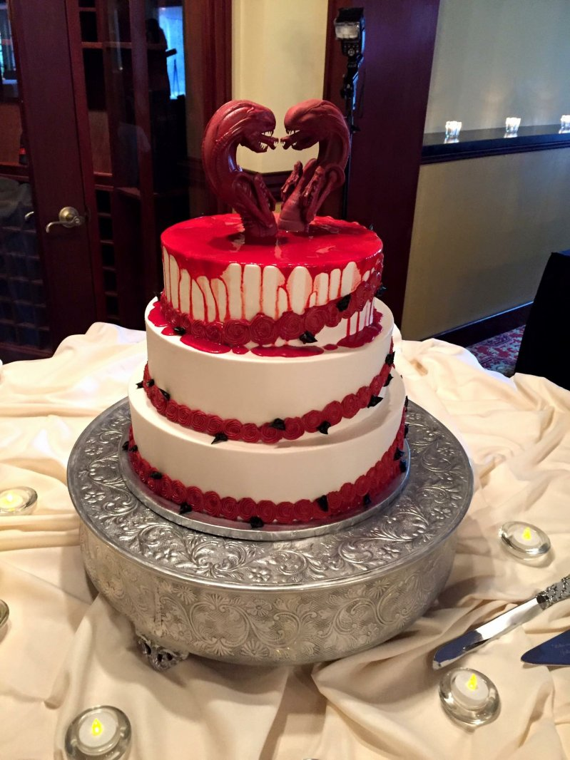 Смешная картинка торт, прикольными животными самое