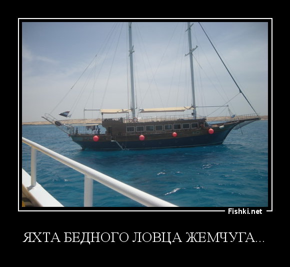 Картинки про мы на яхте смешные картинки