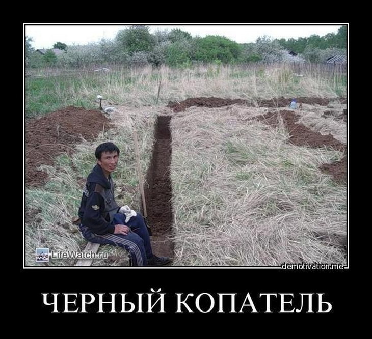 Приколы про копателей картинки