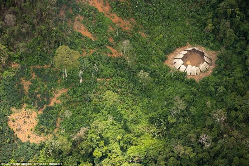 Сексуальные амазонки в джунгли