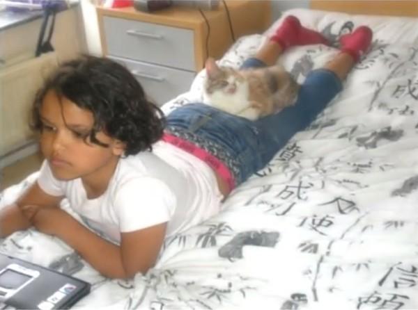 Взрослые боялись даже взглянуть на котенка, которого спасла 7-летняя девочка животные, кошки, стамбул