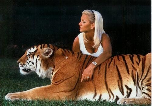 Секс с тигром реально из цирка