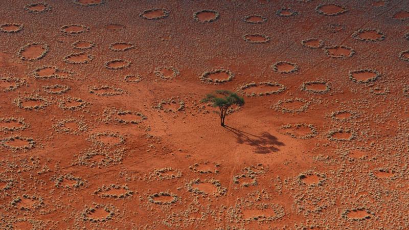"""10. """"Волшебные круги"""" в Намибии. Некоторые исследователи считают, что эти круги появляются в результате жизнедеятельности песчаных термитов природные феномены, природные явления"""