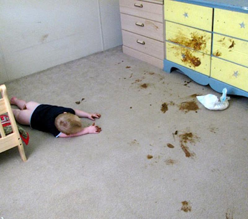 Clean cat poop from carpet