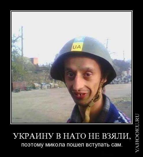 Картинки по запросу украинец - дебил