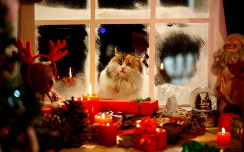 ожидаем новый год картинки