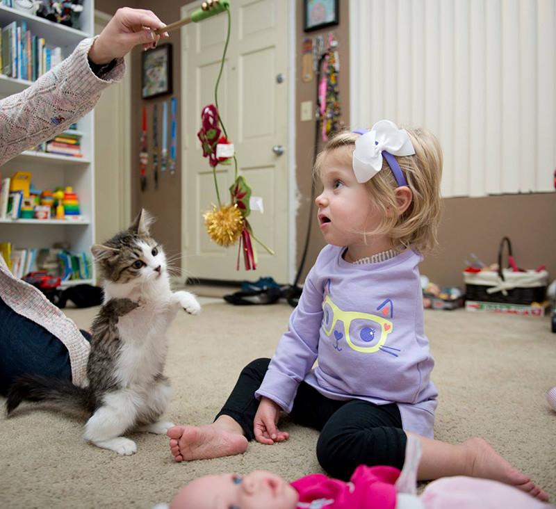 Эта двухлетняя девочка и крохотный котенок оба пережили страшные трагедии. девочка, инвалид, котенок, трогательное