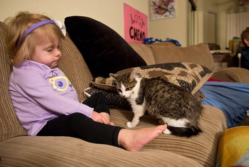 Они нашли друг друга в канун Рождества, когда родители Скарлетт услышали о котенке по телевизору. девочка, инвалид, котенок, трогательное