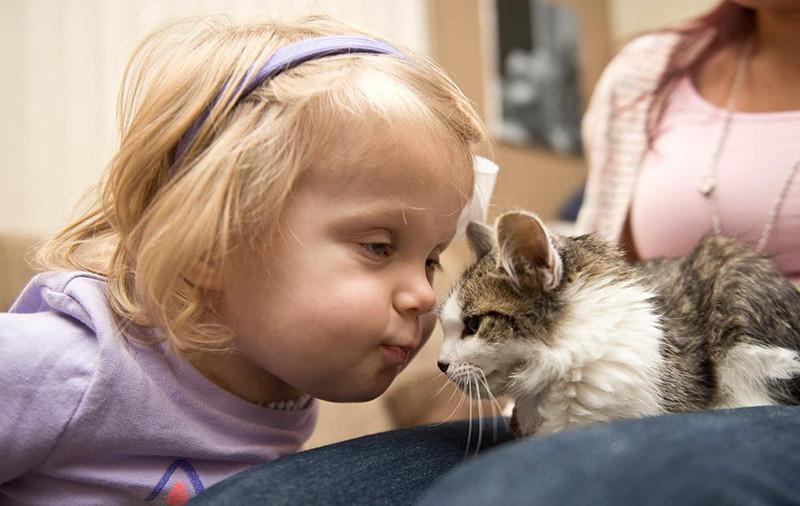 Левую руку Скарлетт ампутировали руку во время лечения редкой формы рака. девочка, инвалид, котенок, трогательное