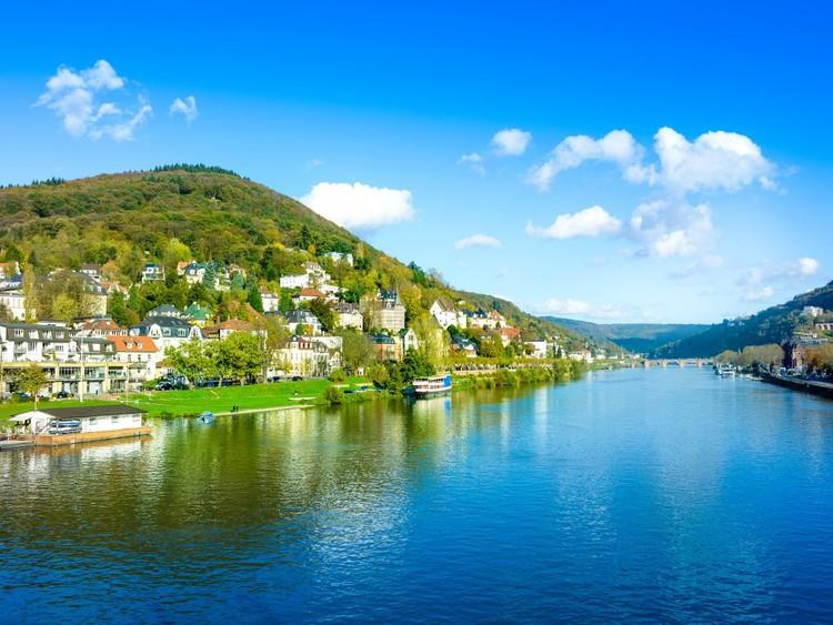Попробуйте бокал рислинга на берегу Рейна, самой длинной реки в Западной Европе (она тянется из Швейцарии через Германию и доходит до Нидерландов) германия, путешествие