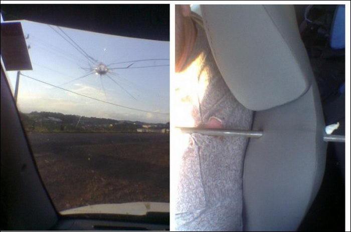 Вылетевшая из фуры арматура лишь оцарапала водителя авто, едущего за ней авария, дтп, животные, история, родился в рубашке