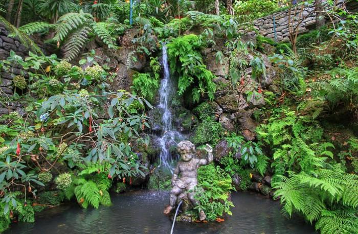 7. Тропический сад Монте история, факты