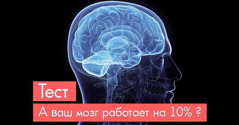 Тест, который выявит уровень работоспособности мозга (9 вопросов)