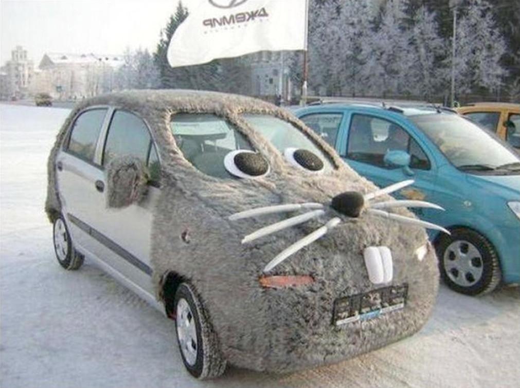 Чтобы вашей любимой машинке было не холодно зимой, её можно укрыть мехом. девушки, женские авто, прикол, юмор