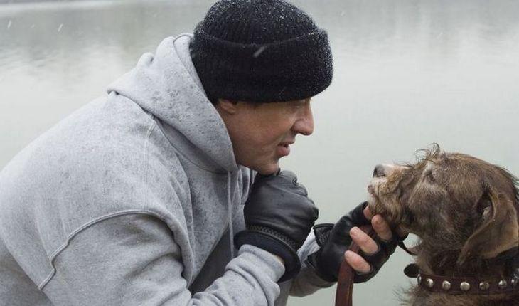 15. Сильвестр Сталлоне был бездомным бездомный, бездомный человек, бомж