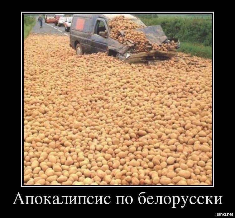 Смешные картинки про белорусов