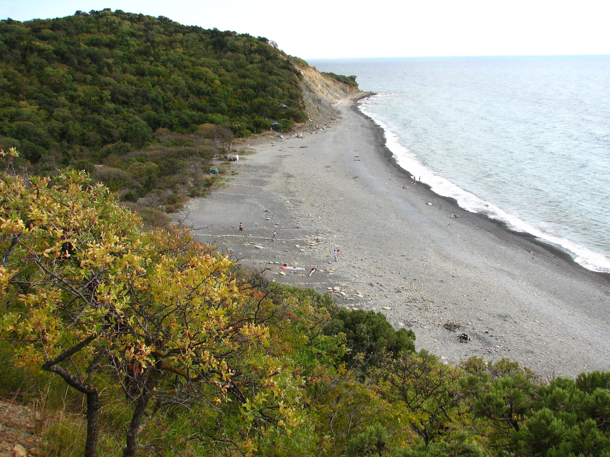сорта картинки черное море утриш апельсины доступна