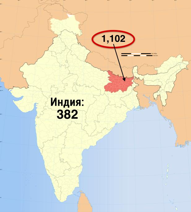 10. Хотя в среднем плотность населения в Индии составляет 382 человека на квадратный километр, в Бихаре эта цифра куда внушительнее – 1102 человека на км². индия, интересное, население, факты