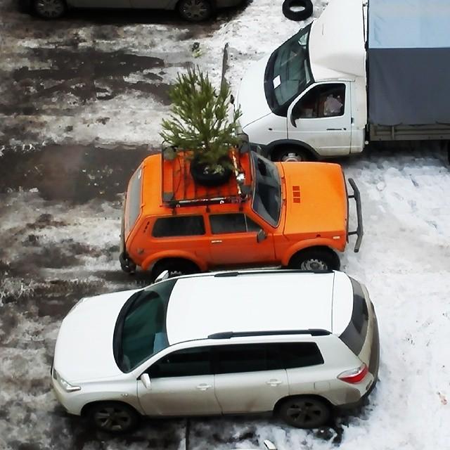 Даже ёлка на крыше авто - вполне нормально города, прикол, россия, ростов-на-дону