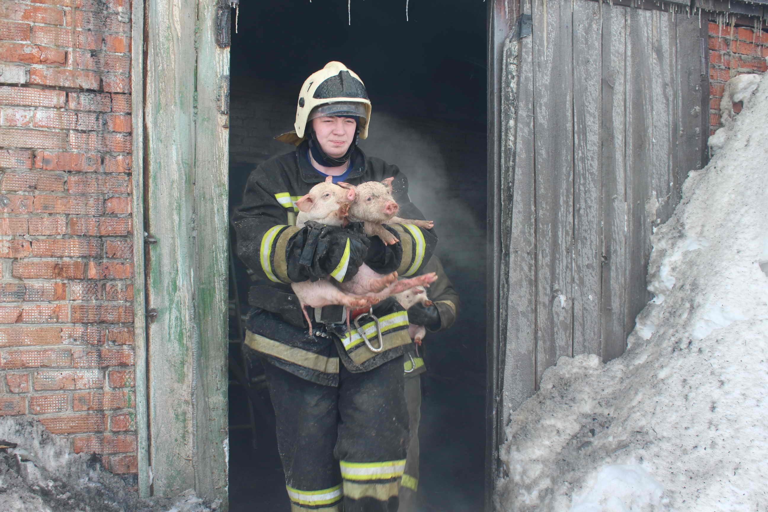 фото пожарный спас человека писать этом помогает