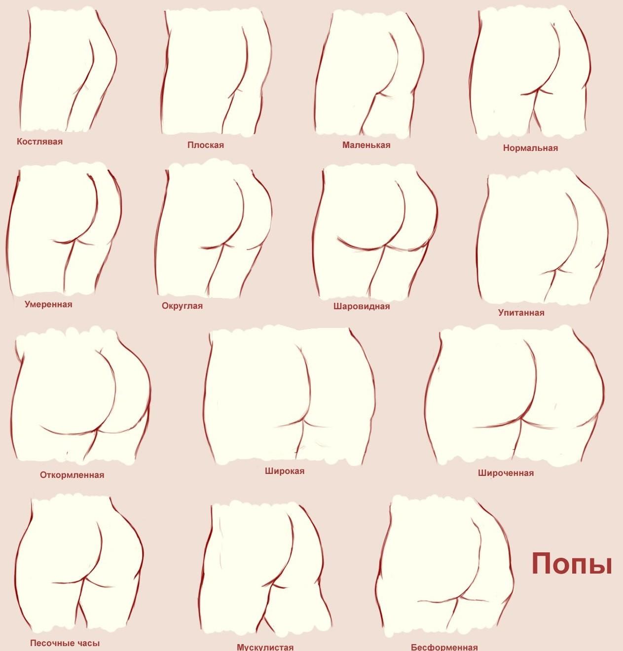 Грудастых доярок формы и виды женских попок видео