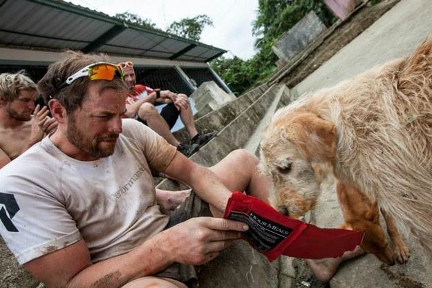 Спортсмены накормили бездомную собаку и не подозревали, к чему это приведет интересное, собака, спорт